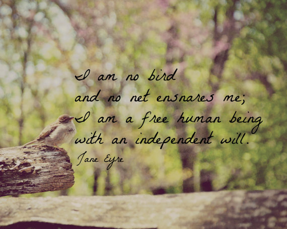 I Am Free Bird  I am no bird and no net